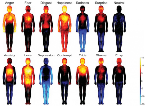 Somatopic Emotion Map